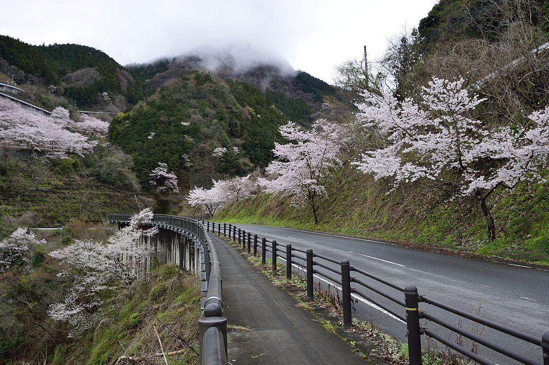 浦山ダムへの道路