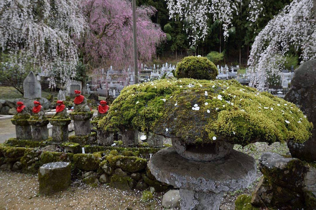 苔生した石灯籠