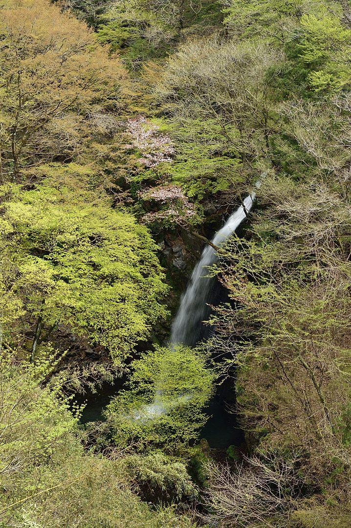 柱戸の不動滝