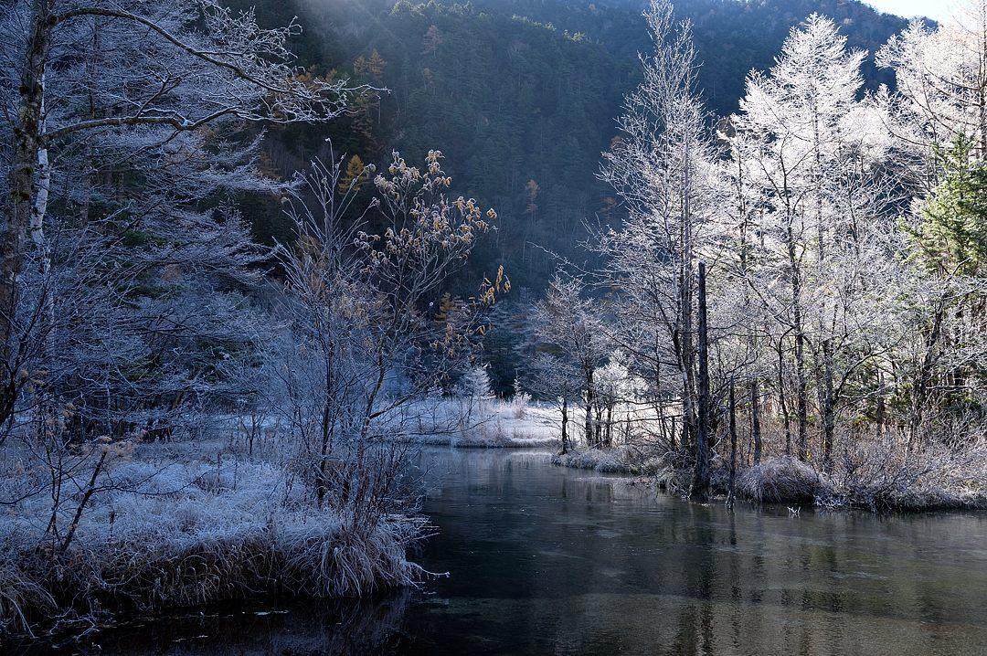 山の陰から太陽が射して、霜が輝き始めました