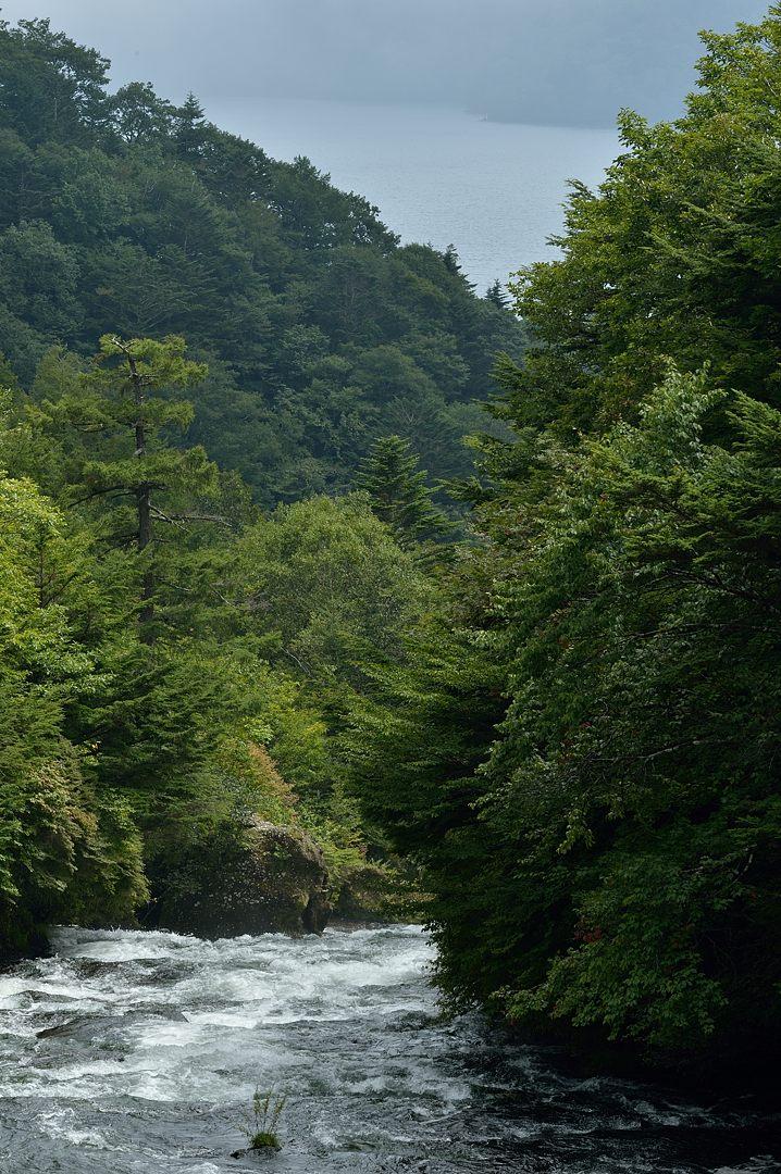 橋上より中禅寺湖を望む