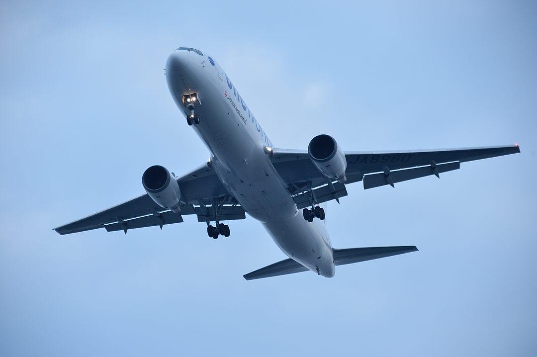 頭上を通過する日本航空機