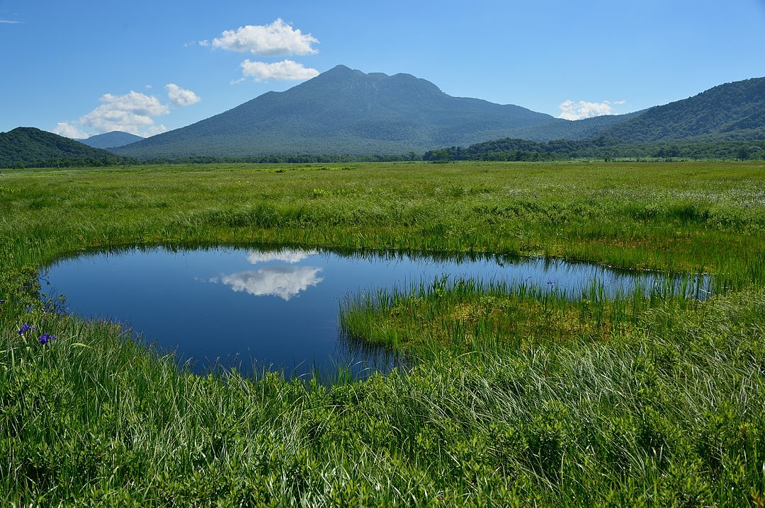 ハート型の池塘