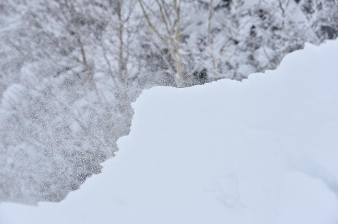 風により雪が舞う