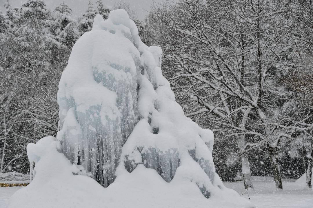 雪を被る人工樹氷