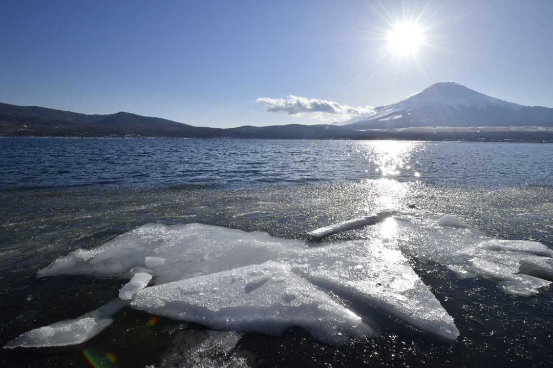 着岸した厚目の氷