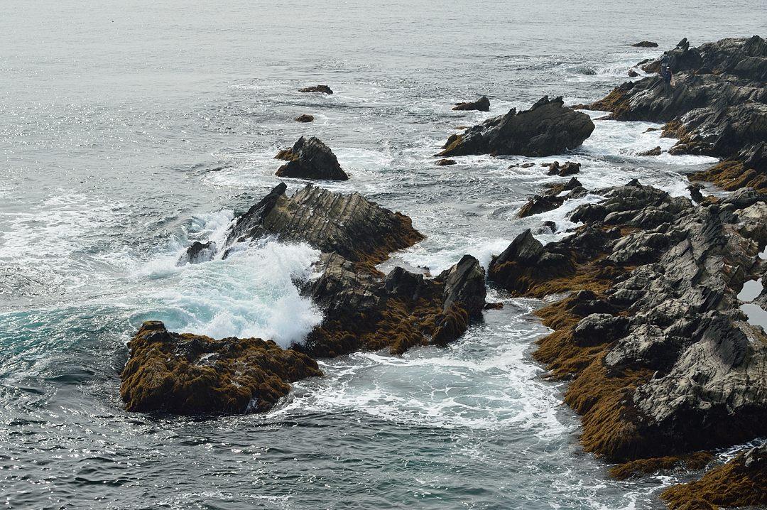大波が打ち寄せます