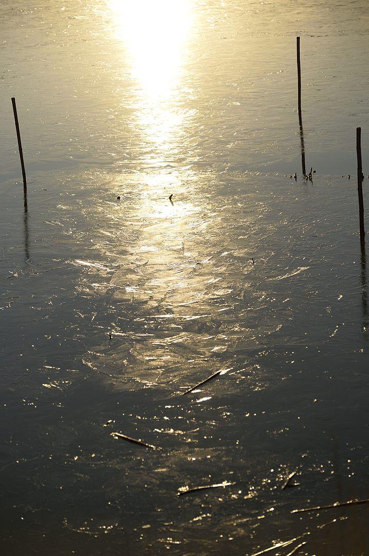 凍り付いた水面