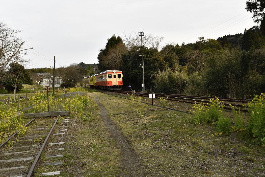 【16:20】いすみ鉄道・下り・67D