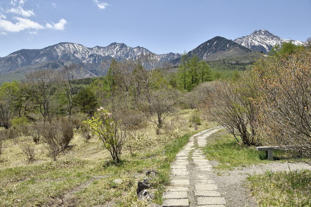 南八ヶ岳連峰