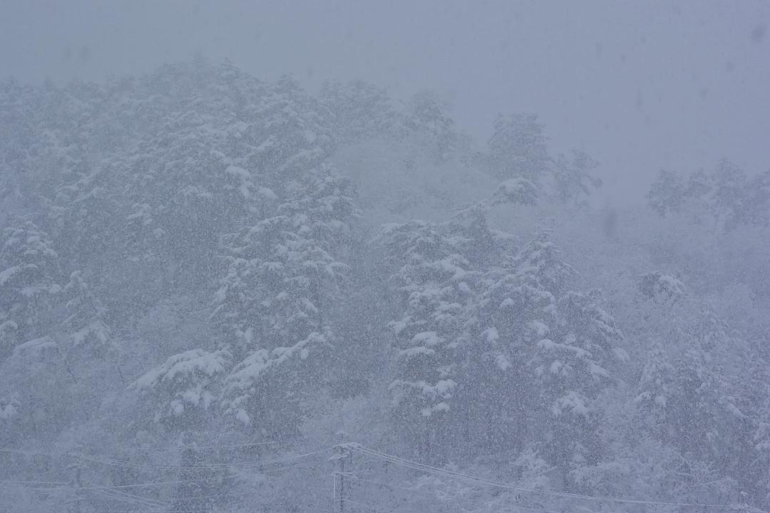 宿からの眺め・本降りの雪