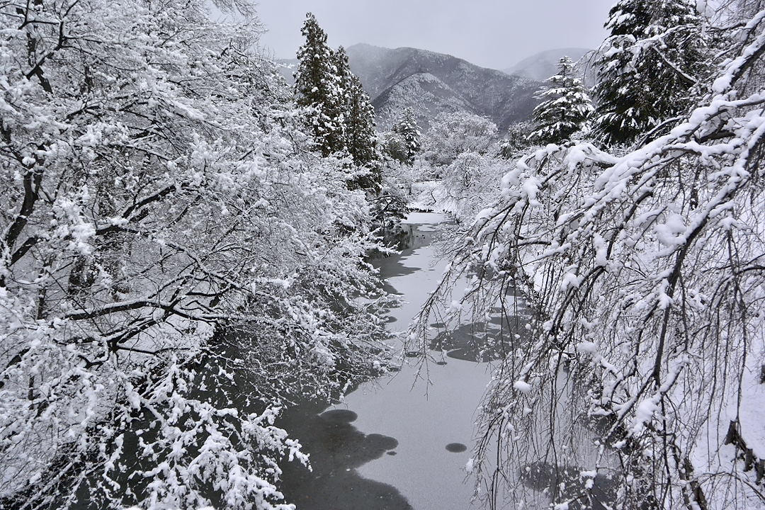上田城・堀