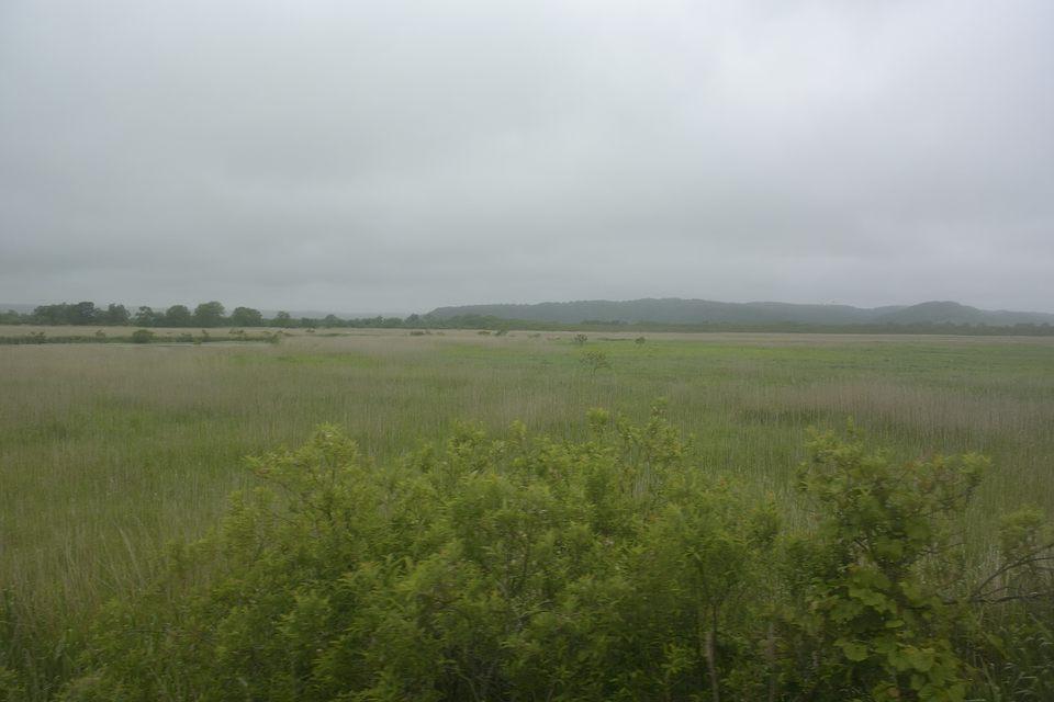 【09:37】 釧路湿原(塘路付近)