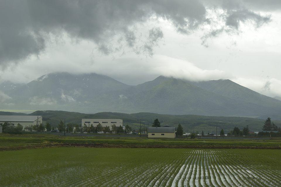 左側が富良野岳