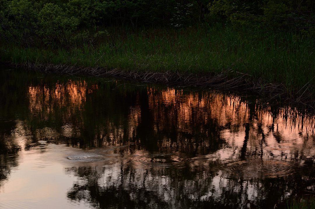 水面に映える夕焼け