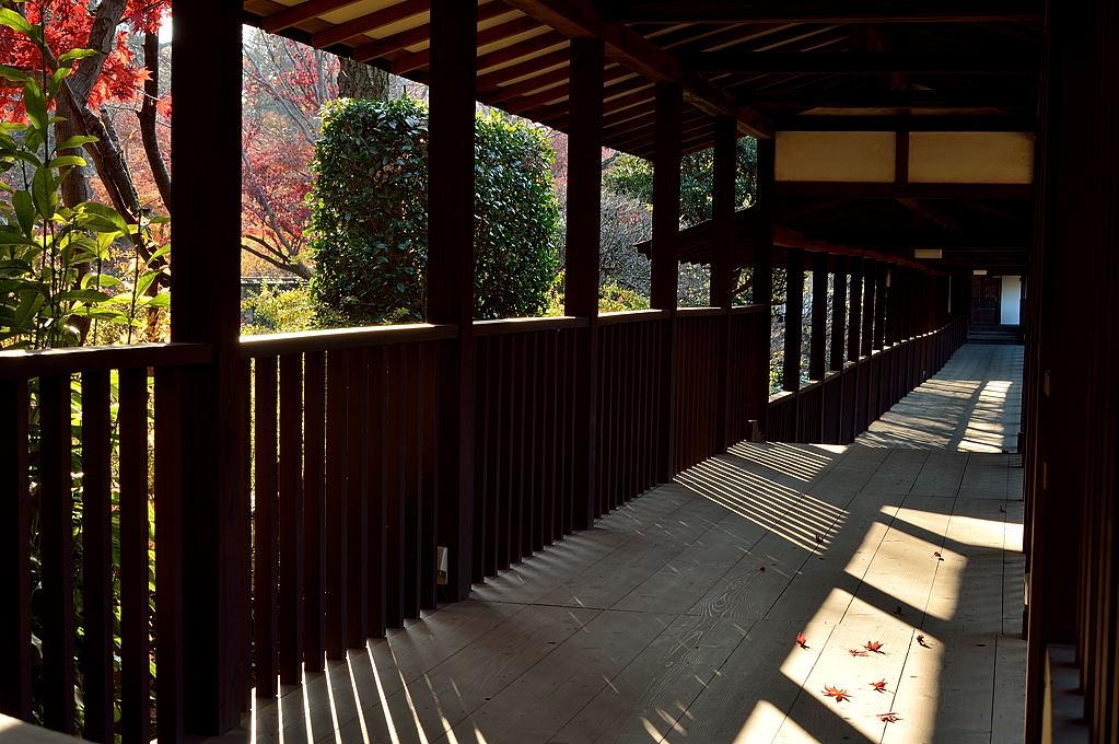 秋の陽の回廊