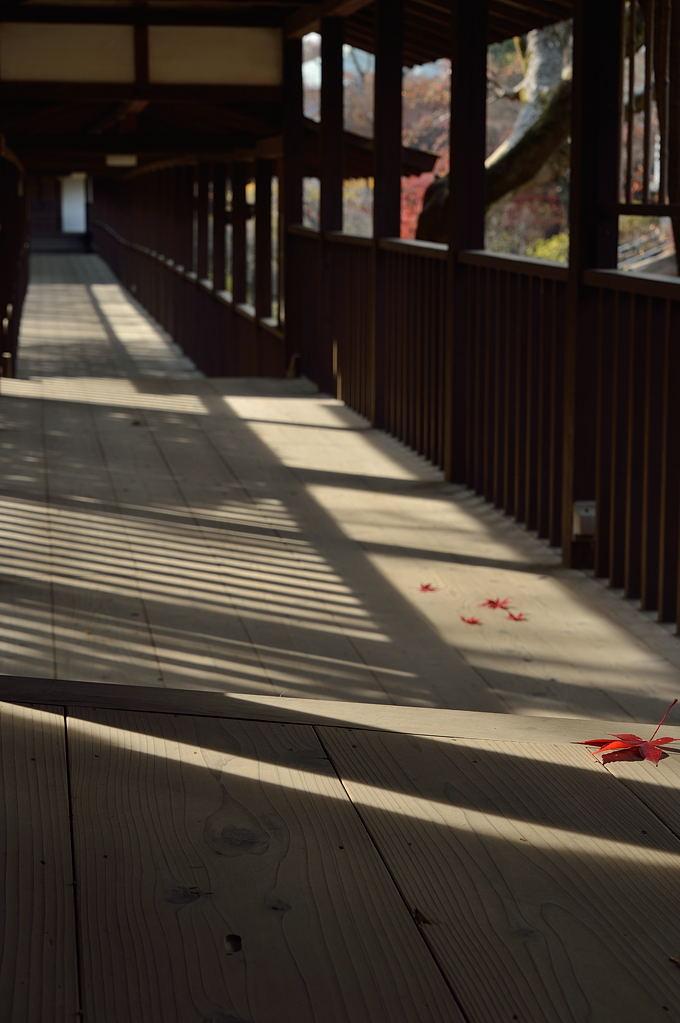 回廊に落ちる影
