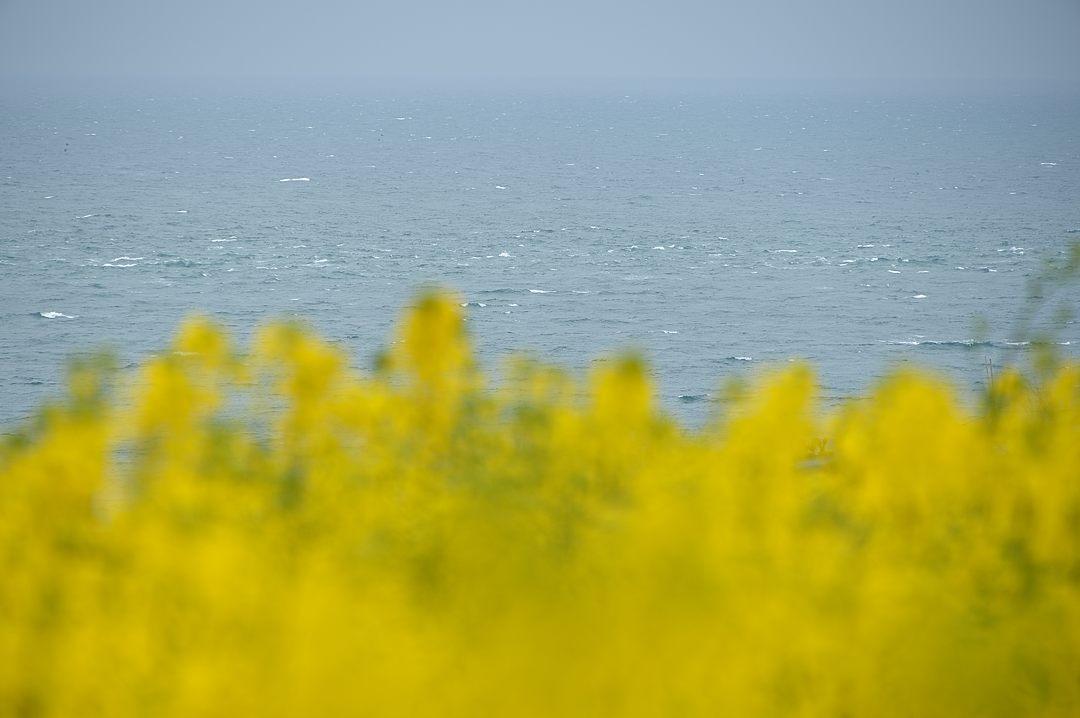 【12:05】 風浪の春海