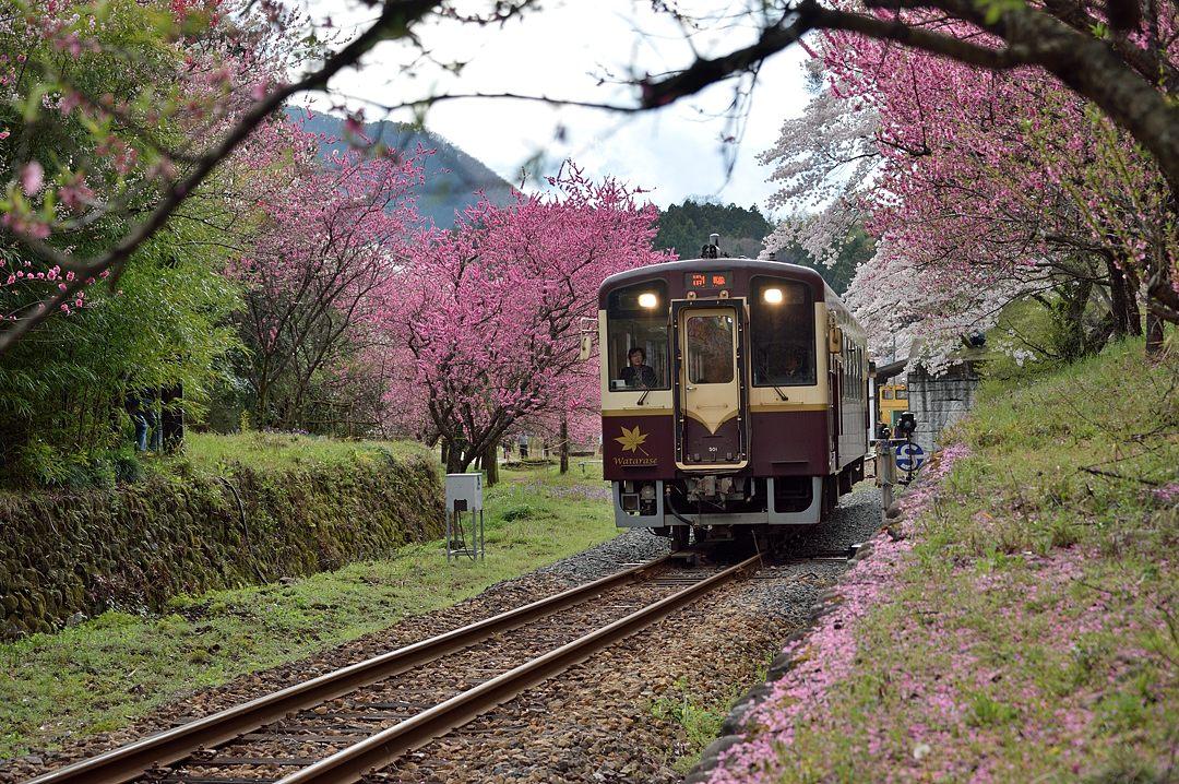 普通列車・2