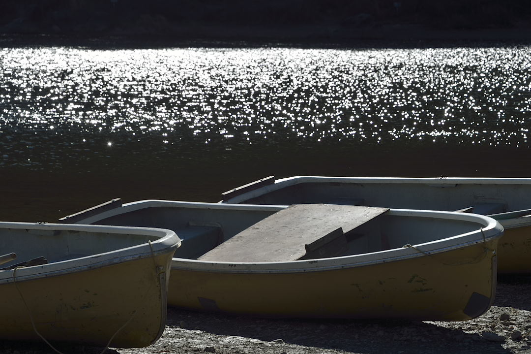 湖面のキラメキ