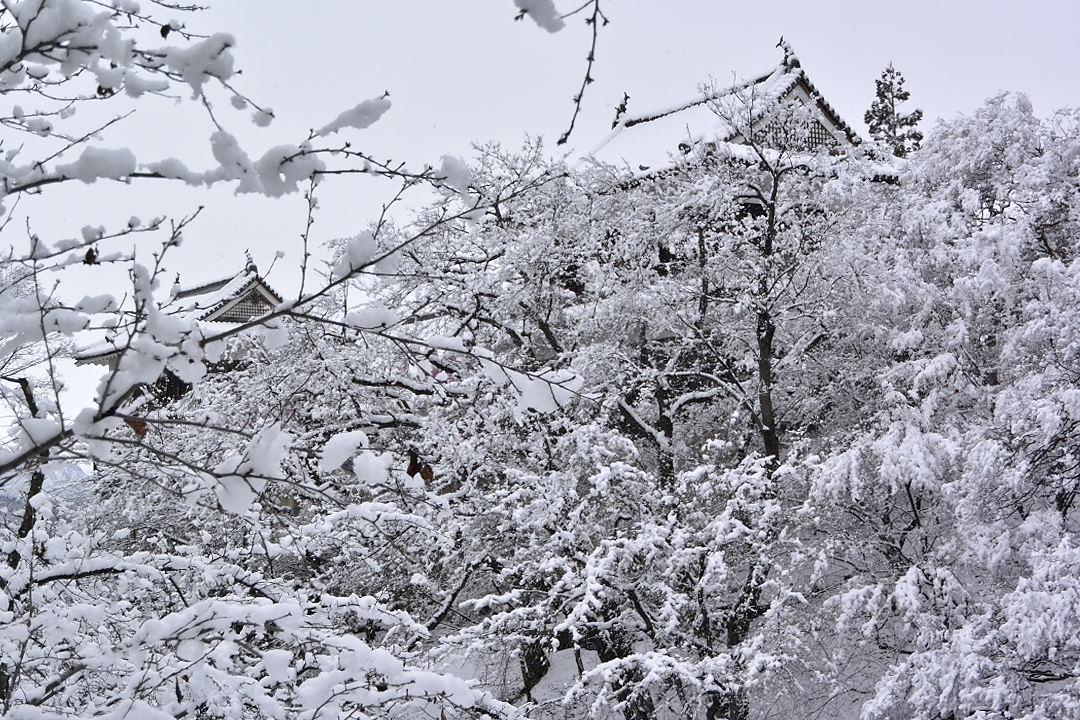 上田城・北櫓